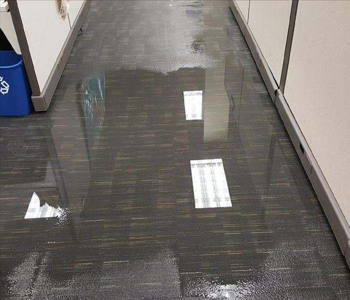 Water Damage How To Thoroughly Remove Water From Your Office Building