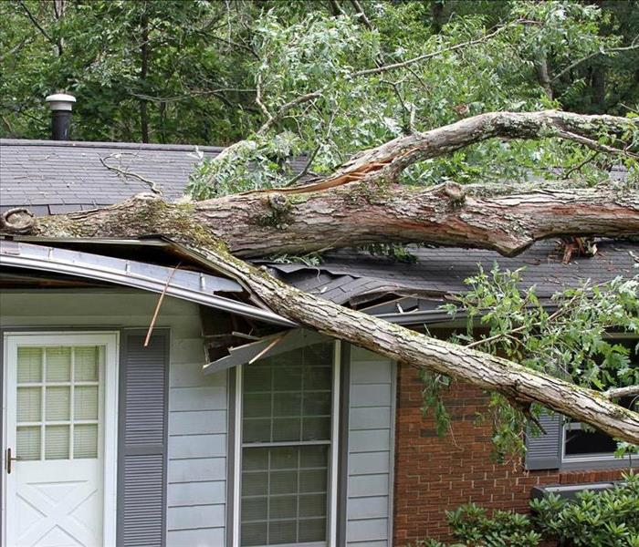 Storm Damage 3 Tips For Storm Safety