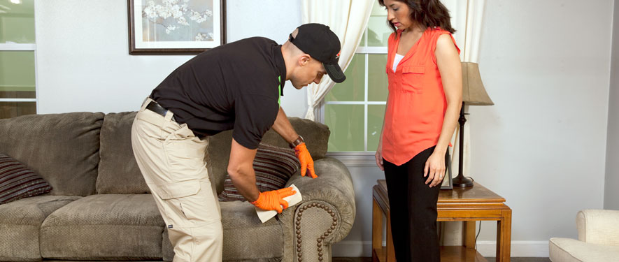 Free Home, GA carpet upholstery cleaning